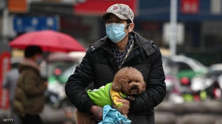 تعرف علي حقيقة انتقال فيروس كورونا من الحيوان إلي الإنسان