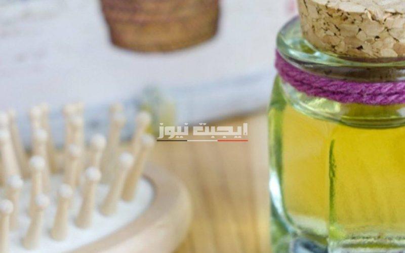 أهم فوائد إستخدام زيت الزيتون للشعر