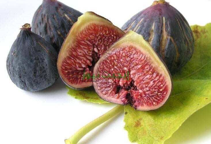 فوائد فاكهة التين الطبية والعلاجية