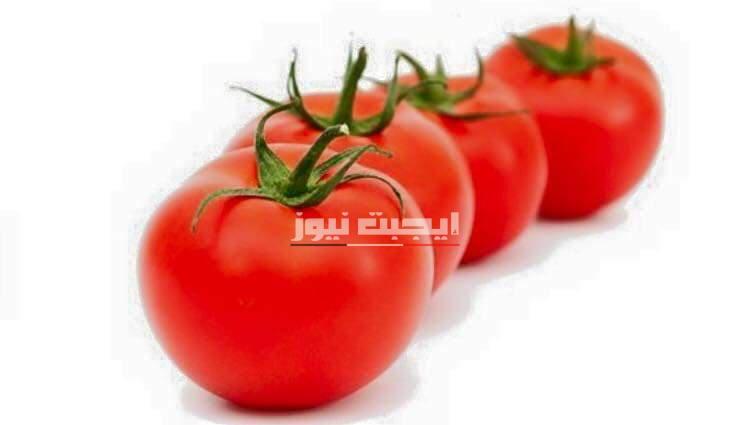 وصفة الطماطم والألوفيرا لتوحيد لون البشرة